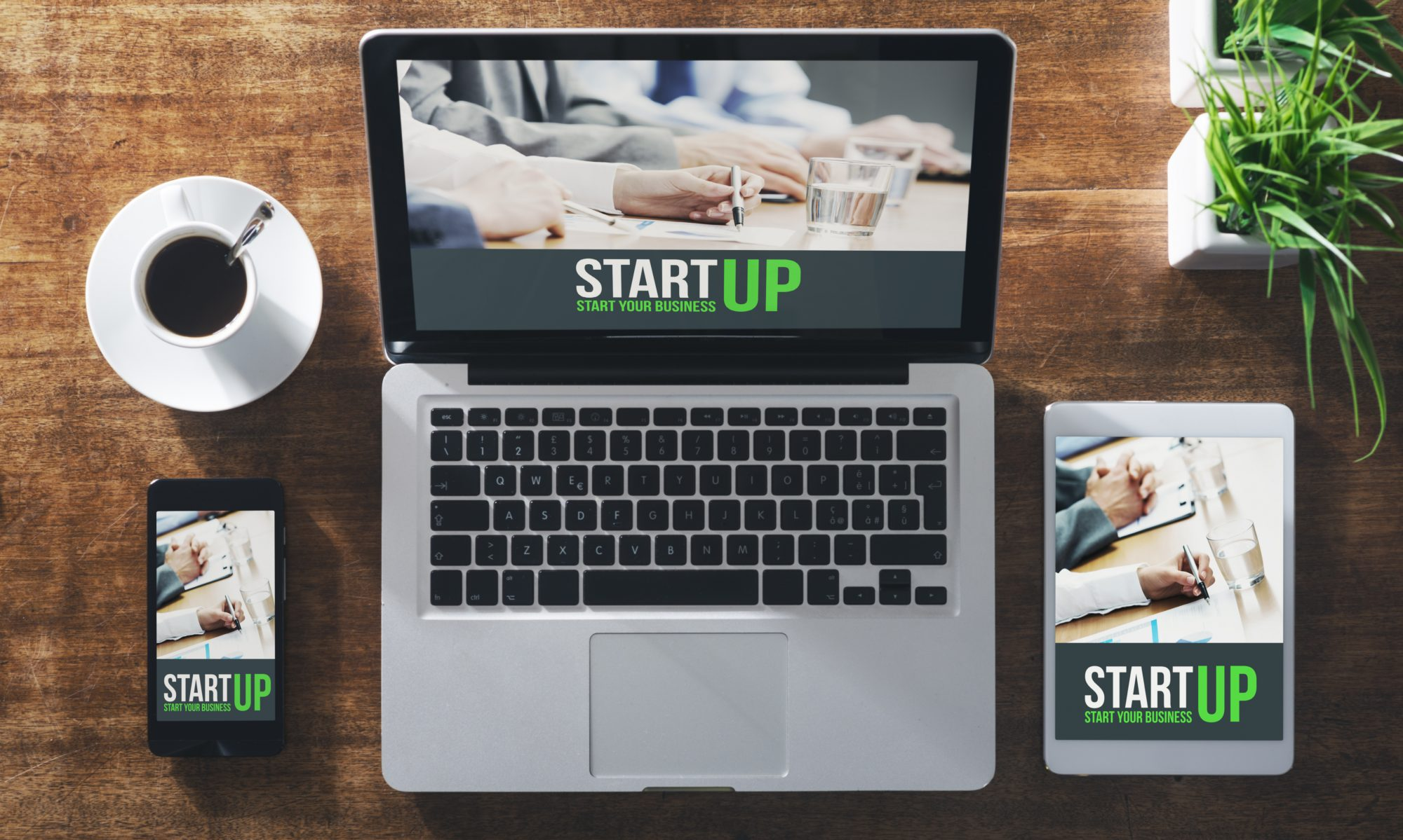 Web Startup Solutions